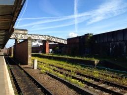 Spring flowers; Shrewsbury station.