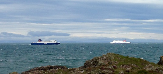 Busy sea lanes, Loch Ryan.