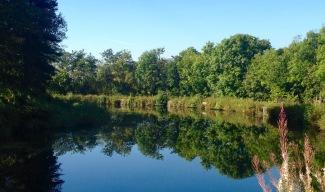 Silence. Firth & Clyde canal.