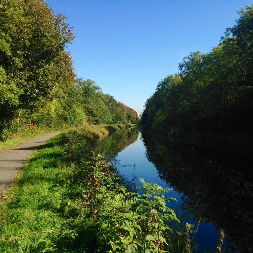 Late afternoon light, Firth & Clyde canal.
