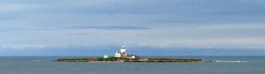 Coquet Island.
