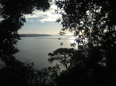 View from Mount Edgcumbe.