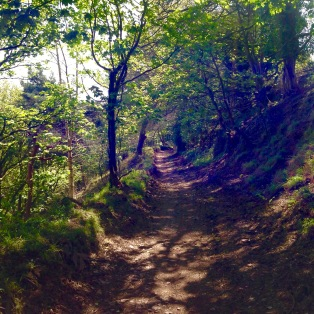 The Path near Minehead.