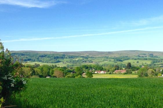 The Quantock Hills.