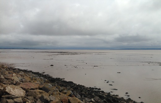 The Severn Estuary; grey day, low tide.