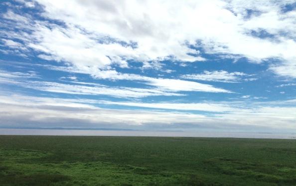 The Severn Estuary.