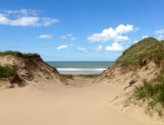 Kenfig Burrows.