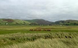 The view inland, Tywyn.