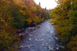 The Afon Ogwen.