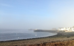 The village of Broughty Ferry.