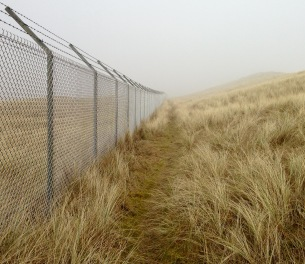 M.O.D. perimeter fence: my guide for several miles through thick coastal fog.
