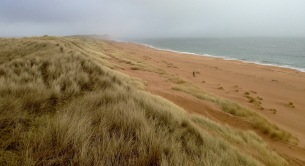 Coastal path atop huge sand dunes: 15 mile beach walk from Peterhead to Inverallochy.