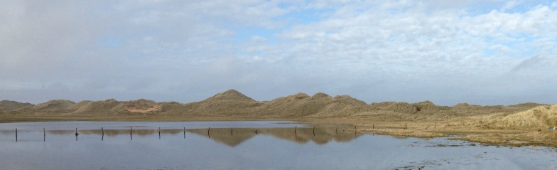 Sand dunes reflected in the Loch of Strathbeg.
