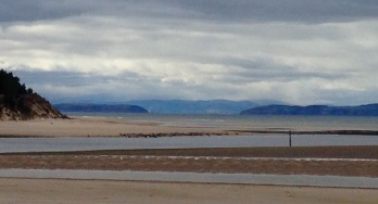 Colony of over 100 seals in the mid ground; the Sutors of Cromarty beyond.