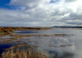 Spey Bay.