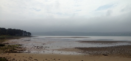 A foggy Sunday morning: walking round Loch Fleet, en route from Dornoch to Golspie.
