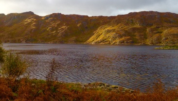 Loch Ailort; evening light.