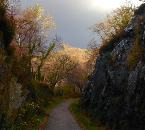 Walking along a cycle path on the route of the Ballachulish Branch Line.