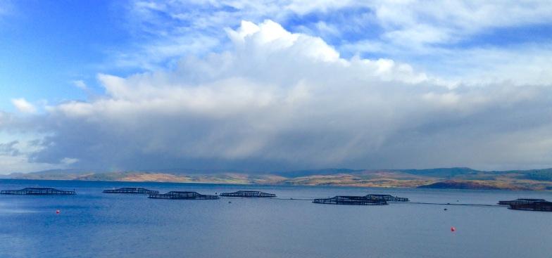 Salmon fishery, Loch Fyne.