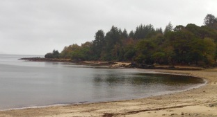 Saddell Bay, where I saw otters.