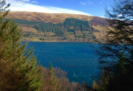 Loch Scriven.