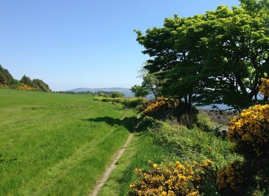 "Unexpectedly rural: walking round the Kilcreggan ""peninsula""."